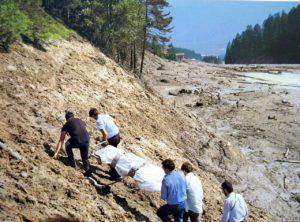 Nell'opera di soccorso e di recupero delle salme si prodigarono anche centinaia di volontari.