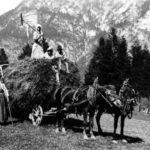 Vajòla - Fienagione - 1929