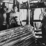 Segantini al lavoro - Anni '30 del Novecento